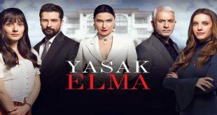 خلاصه داستان سریال ترکی Yasak Elma ( سیب ممنوعه )